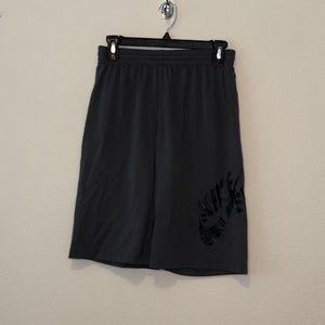 Grey Nike SB Shorts (L)